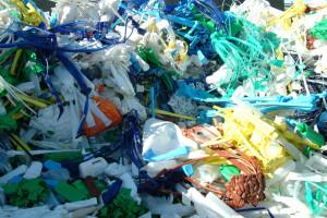 plastic-waste-3-1490098-1279x852